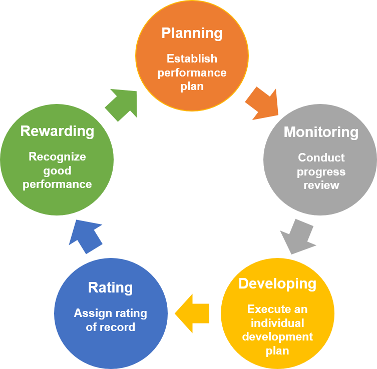 performance management consulting